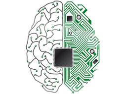 ساخت نخستین «تراشه مغزی جهان»