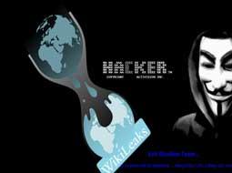 حمله هکرها به سایت ویکیلیکس