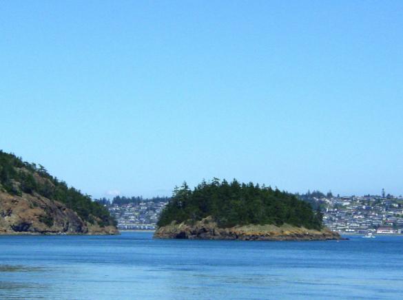 موسس مایکروسافت جزیره شخصی خود را فروخت