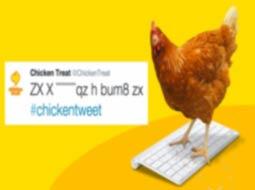 این مرغ توئیت میکند!