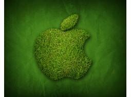شتاب اپل در استفاده از انرژی پاک