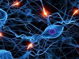 ساخت تراشه مخصوص شبکههای عصبی برای تلفنهای همراه هوشمند