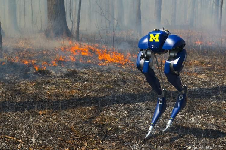 نخستین روبات دوپا با قابلیت راه رفتن روی آتش + ویدیو