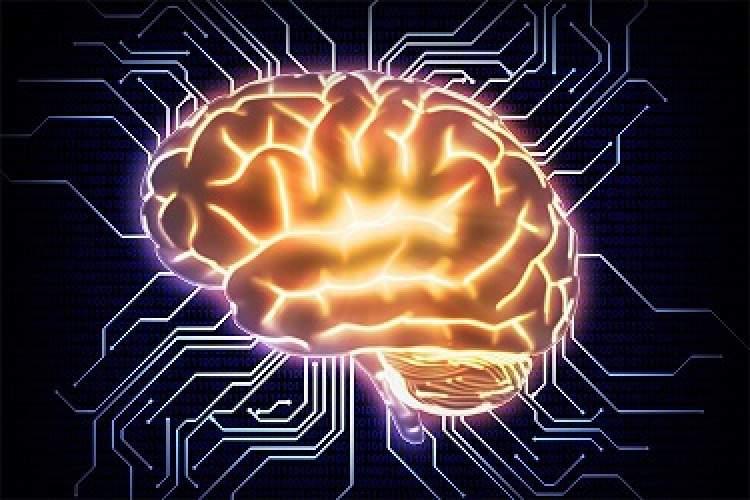 سیستم متن باز GPipe گوگل برای آموزش شبکههای عصبی عمیق